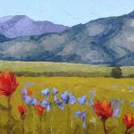 Bridger Wildflowers by Kara Tripp