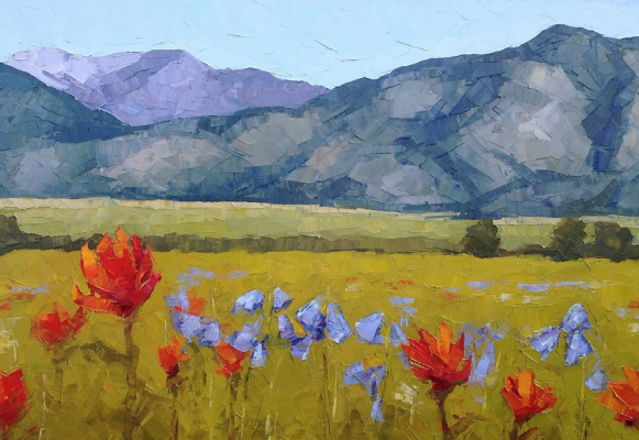 Bridger Wildflowers by Kara Tripp